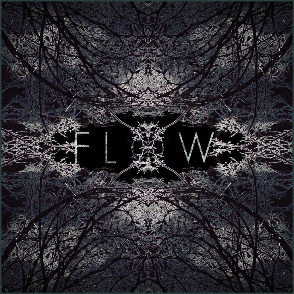 flow album cover